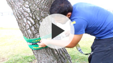 Setting Up Your Slackline